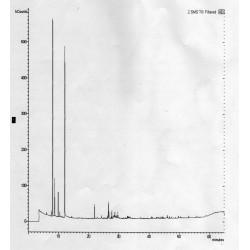 Cromatogramma dell'olio essenziale di abete bianco